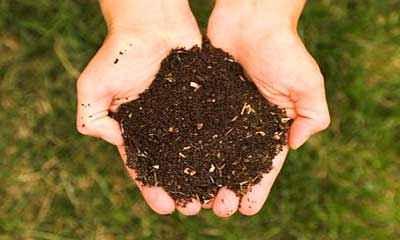 Количество органических удобрений необходимое для востановления гумуса в почве