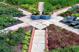 Севооборот - чередование сельскохозяйственных культур
