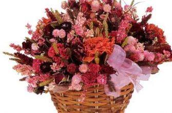 Композиции из сухих цветов