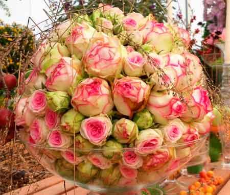 Основные элементы цветочной композиции