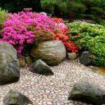 Колорит древесных растений в цветоводстве