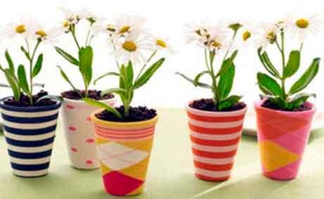Способы ухода за растениями