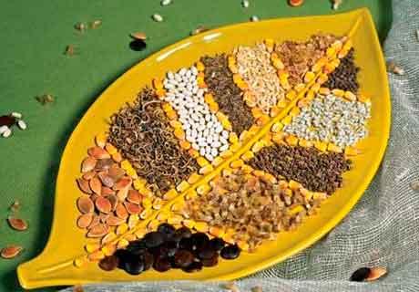 Государственный контроль определения качества семян