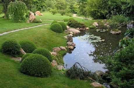Мини-водоемы для сада устройство и благоустройство