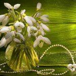Цветы в подарок на весенние праздники