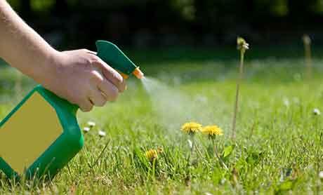 Применение химических гербицидов