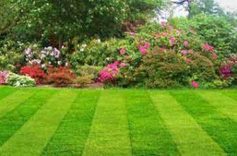 газона сделать грунт частью ландшафтного дизайна