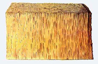 Комлевые гнили древесных пород