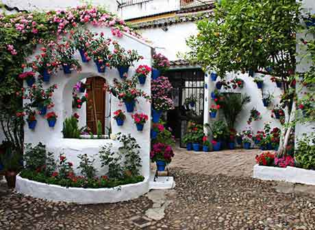 Вазы для цветов в итальянском дворике