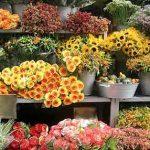 Интернет – магазин цветов