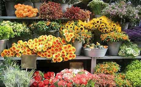 Интернет магазин цветов составляем