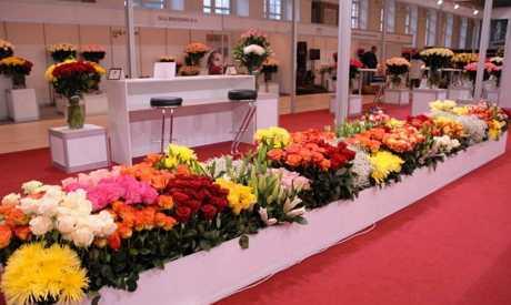 Посещение флористических выставок в России.