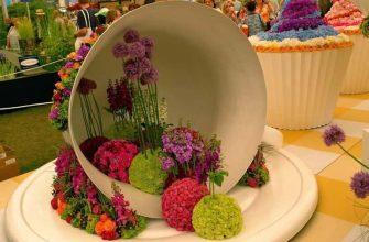 Цветочная выставка