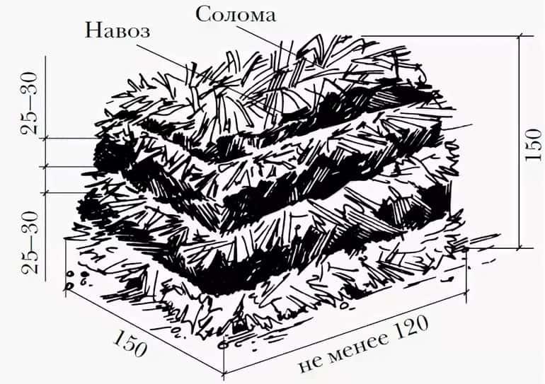 Подготовка субстрата для выращивания шампиньонов