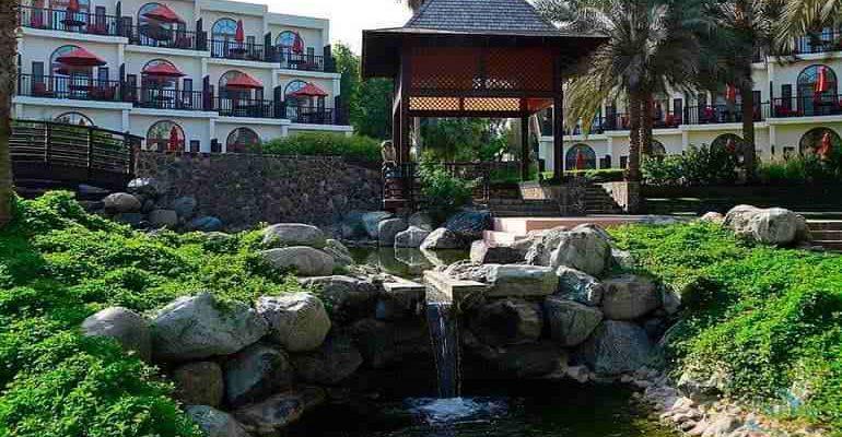 Озеленение отеля или гостиницы своими руками.