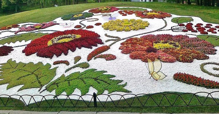 Оригинальные ковровые цветники